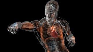 Необычные факты о нашем теле