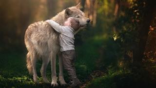 ЖИВОТНЫЕ СПАСАЮТ ЛЮДЕЙ ТОП 5 животные которые спасли жизнь