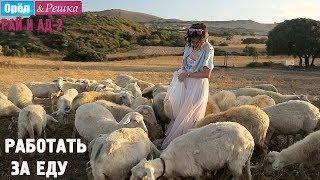 Натали Неведрова работает за еду на Сардинии! Орёл и Решка. Рай и Ад 2