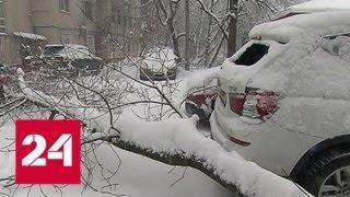 Выходные в снежном плену: непогода парализовала весь транспорт - Россия 24