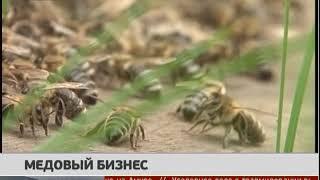Медовый бизнес. Новости 28/03/2018. GuberniaTV