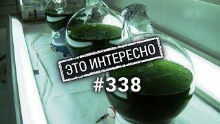Это интересно 338: что делают из нефти. Интересные факты о нефте