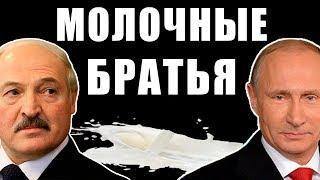 Лукашенко, Путин, Молоко. Чем опасно белорусское молоко и как политика влияет на отношения РБ и РФ.