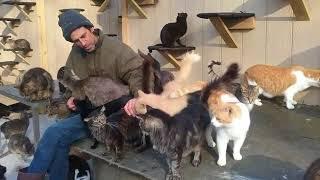★ Потеряв сына, он решил спасать кошек  Уже свыше 300 спасенных душ!