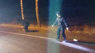 Осмотр места происшествия по делу о ДТП в Городокском районе