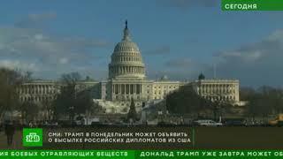 Трамп готов выслать российских дипломатов из за дела Скрипаля