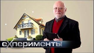 Большая чистка | ЕХперименты с Антоном Войцеховским