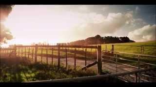 Красота природы во всех её проявлениях (Nature HD)