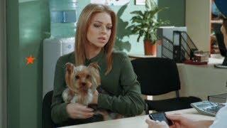 Маленькая собачка лишила чести служебную овчарку - На троих - 4 сезон | ЮМОР ICTV