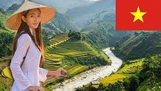Вьетнам. Интересные факты о Вьетнаме