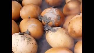 У нас - печёная картошка, у них - ... (юмор). Вот как надо готовить яйца!