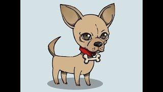 Смешное видео про собаку! Собака в носках!
