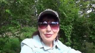 #314 США Аляска Анкоридж Ностальгия Пою песни Знакомьтесь - моя семья