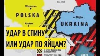 """Сказка о """"Евроинтеграции"""" Украины закончилась: Киев ОБИДЕЛСЯ на Польшу и хочет домой. Подробности"""