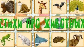Поиграйка. Живая природа. Стишки загадки про животных.
