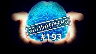 Это интересно: Что мы знаем об  IQ  Неизвестные факты и мифы