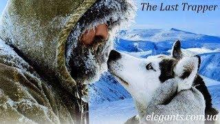 «Последний зверолов» - захватывающий, приключенческий фильм для всей семьи в мире животных!
