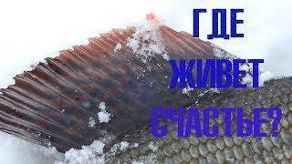 Волшебная рыба хариус или кто отвечает за твое счастье?