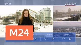 """""""Утро"""": погода на выходные - Москва 24"""
