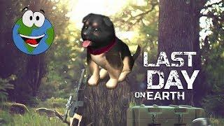 Ура!!! Собачка - Last Day on Earth Survival (игра на Android и iOS)