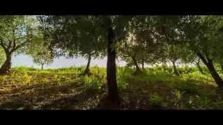 Красивые места (Beautiful places) - Природа Италии в HD  Nature Italy